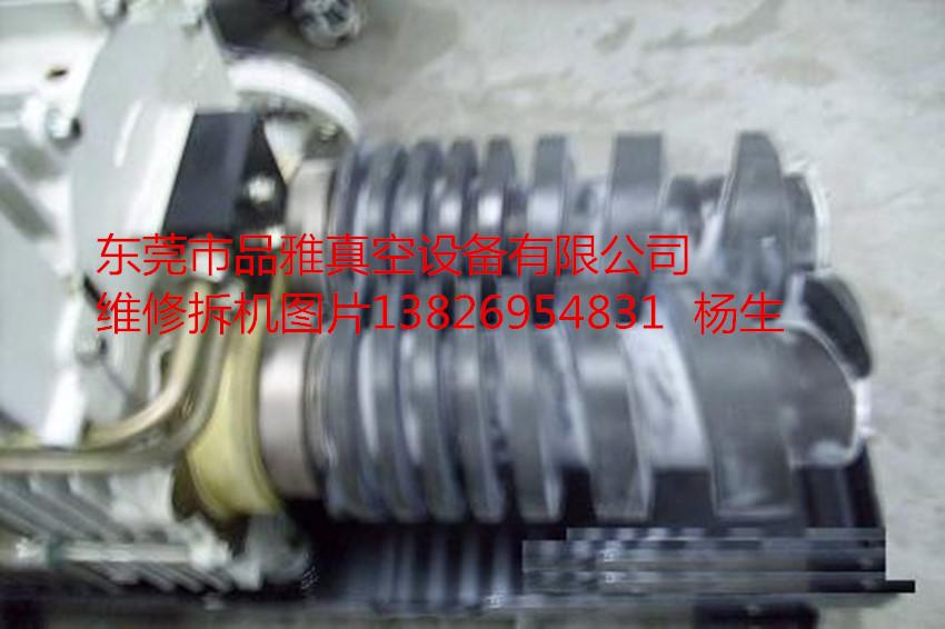莱宝真空泵SP630拆机图